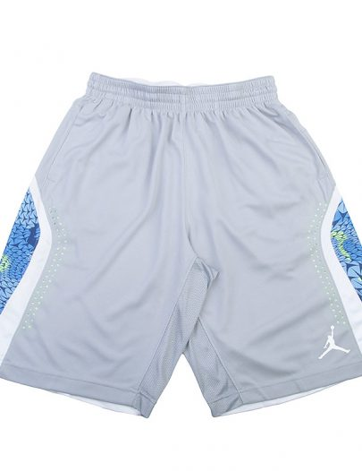 Шорты Jordan Flight Print/Perf Short Jordan